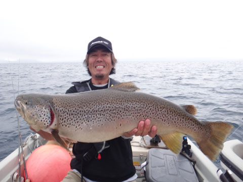 trout-blog20140824303-02