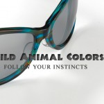 WildAnimalColorsMain