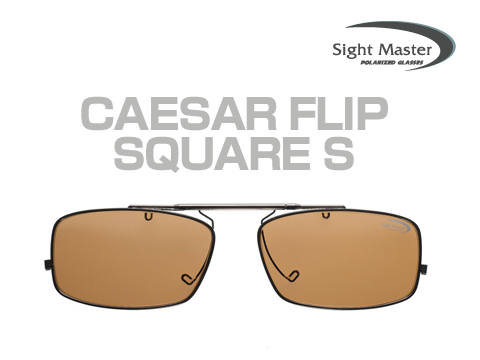 CaesarFlipSMain